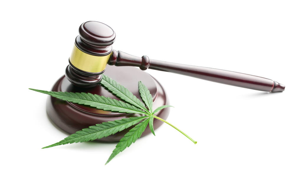 What Will Happen With Marijuana Legalization in 2020? | Pot Legalization