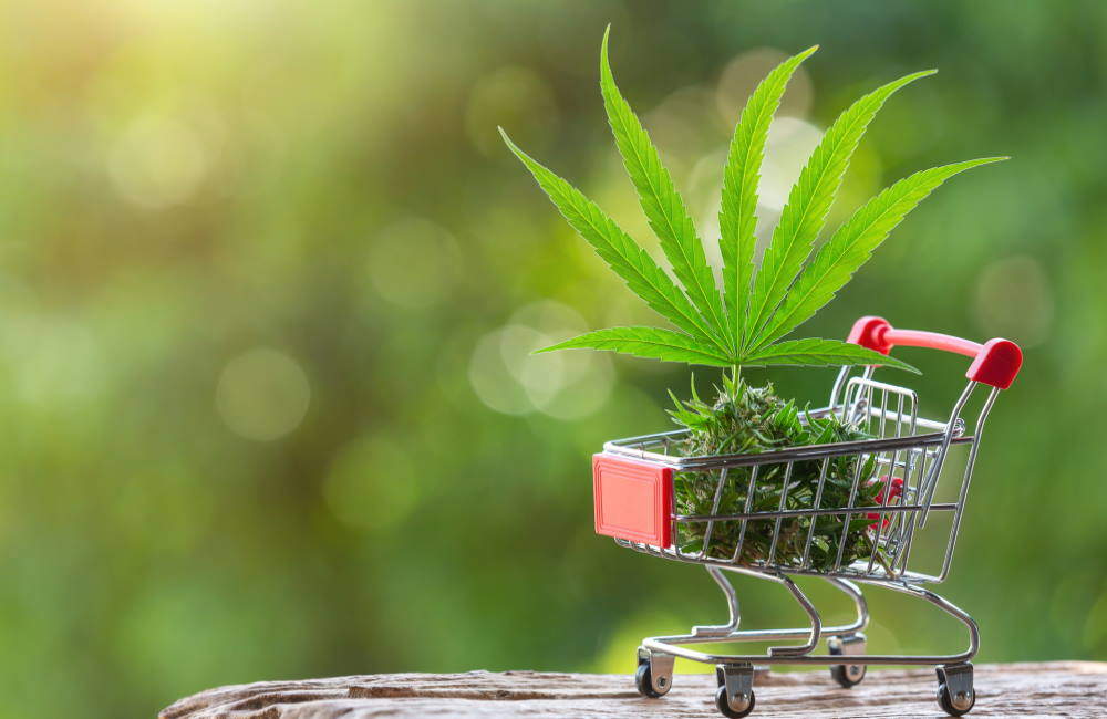 How to Choose Your First Dispensary | Dispensary Considerations