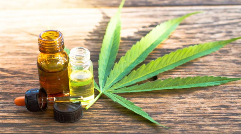 British Girl's Miraculous Recovery Credited to Cannabis Oil Product