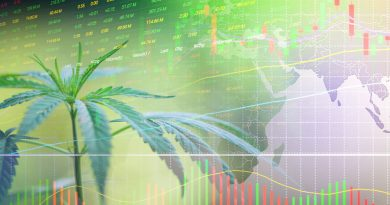 Marijuana Trends 2021: 8 Trends to Watch For In The New Year