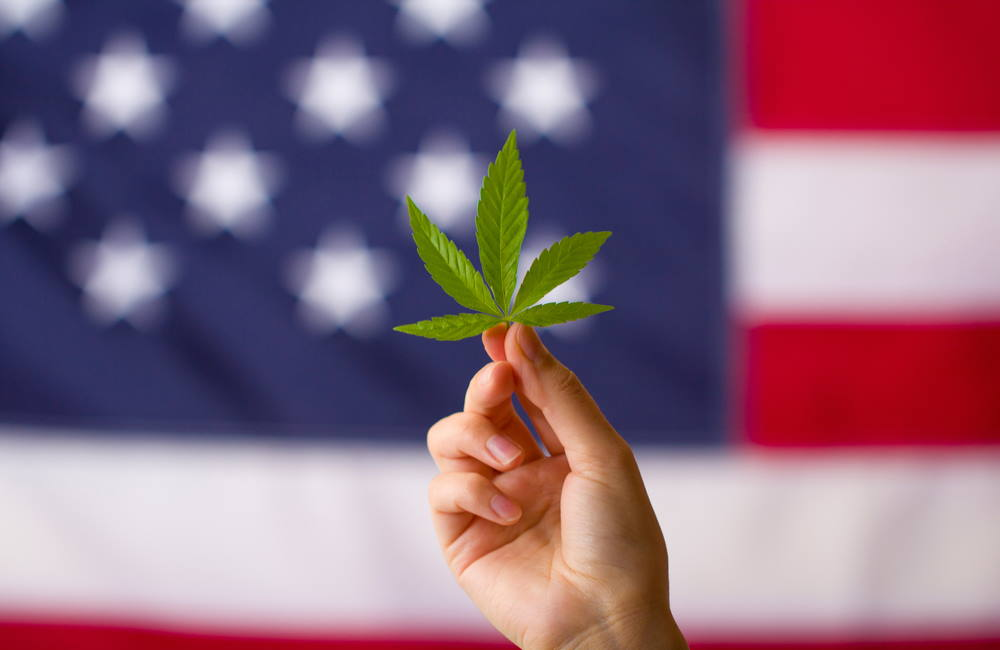 What Are the Next States to Legalize Marijuana? | Recreational & Medical