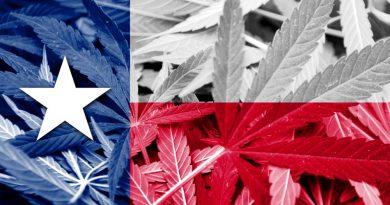 Texas House Passes Bill to Expand Medical Marijuana Access
