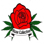 Rose Collective - Venice