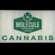 Molecule Cannabis