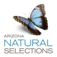 Arizona Natural Selections of Scottsdale