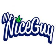 Mr. Nice Guy - Springfield