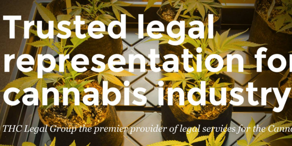 thclegalgroup legal services cannabis industry trusted representation
