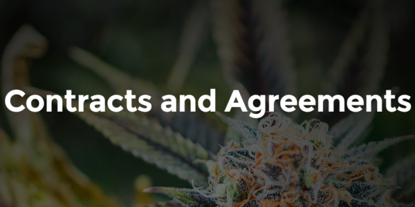 thclegalgroup thc cannabis legal industry contracts agreements