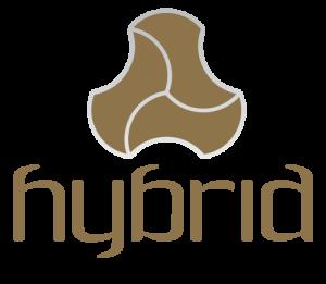 The Hybrid Creative