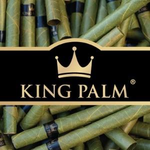 King Palm